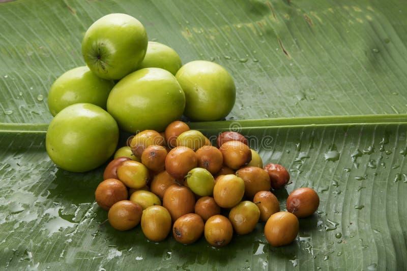 Fruto: Feche acima das variedades diferentes de jujuba indiano Apple isolou-se no fundo verde da folha da banana disparado no est fotos de stock