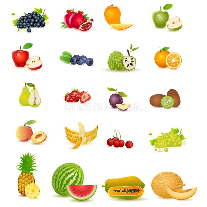 Fruto fresco ilustração stock