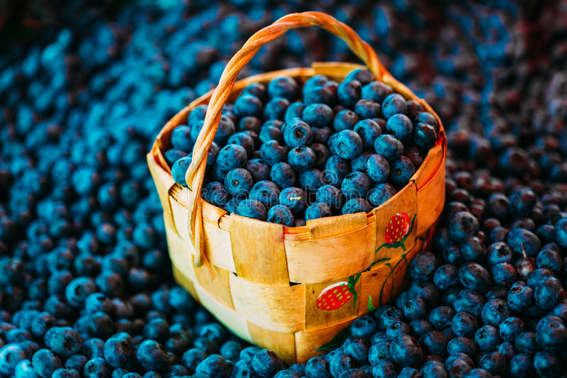 Fruto fresco Berry Blueberries In Wicker Basket orgânico imagem de stock royalty free
