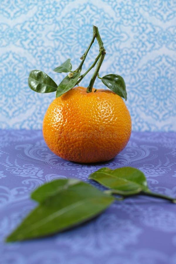 Fruto fresco das tanjerinas com folhas verdes imagem de stock royalty free
