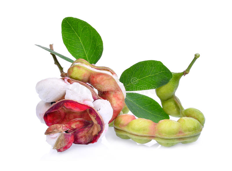 Fruto fresco do tamarindo de manila isolado no branco fotos de stock