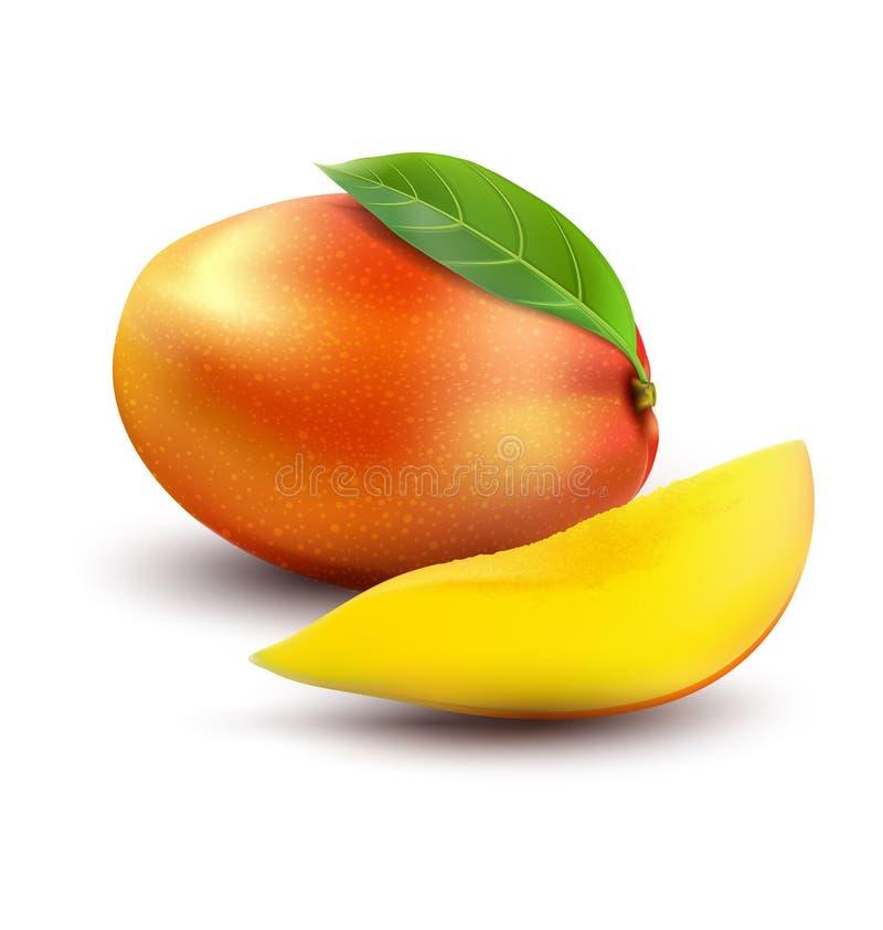 Fruto maduro da manga do vetor com fatias ilustração do vetor