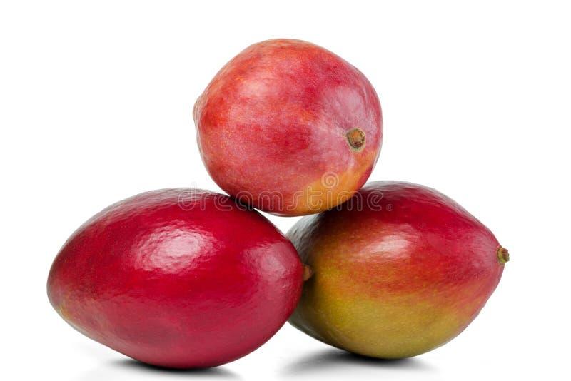 Fruto maduro da manga três em um montão Isolado no fundo branco foto de stock
