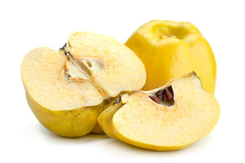Fruto maduro do marmelo imagem de stock