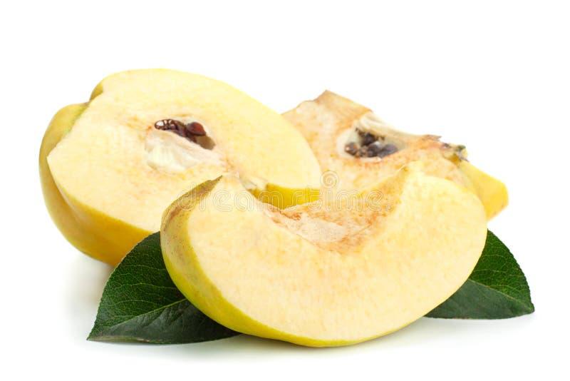 Fruto maduro do marmelo fotos de stock