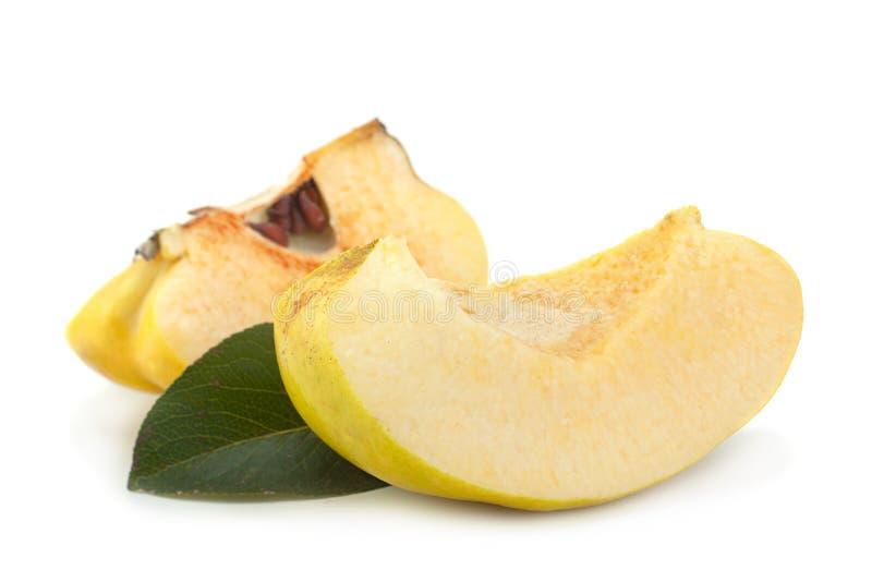 Fruto maduro do marmelo imagem de stock royalty free