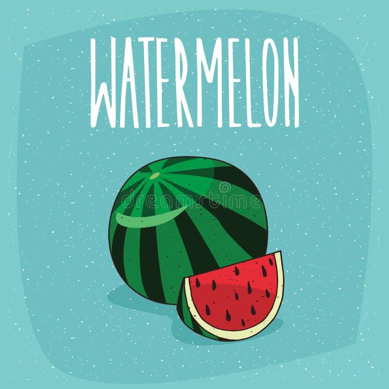 Fruto maduro isolado da melancia e parte cortada ilustração do vetor