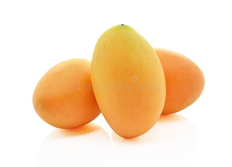 Fruto mariano doce da ameixa foto de stock royalty free