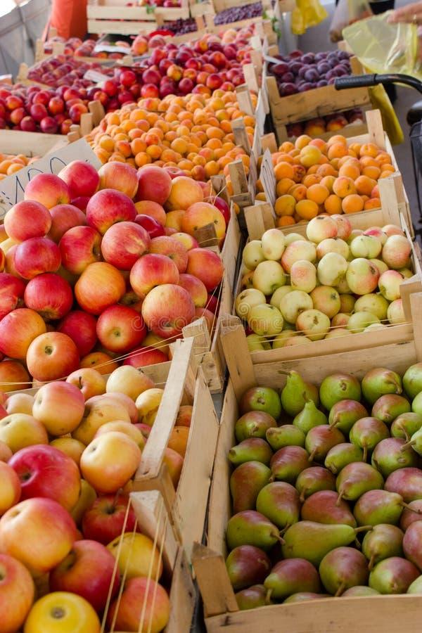 Fruto orgânico fresco da Sérvia foto de stock