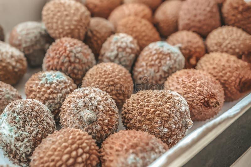 Fruto podre do lichi em uma gaveta de madeira em um fundo de madeira rústico Os frutos são cobertos com o molde Close-up imagens de stock