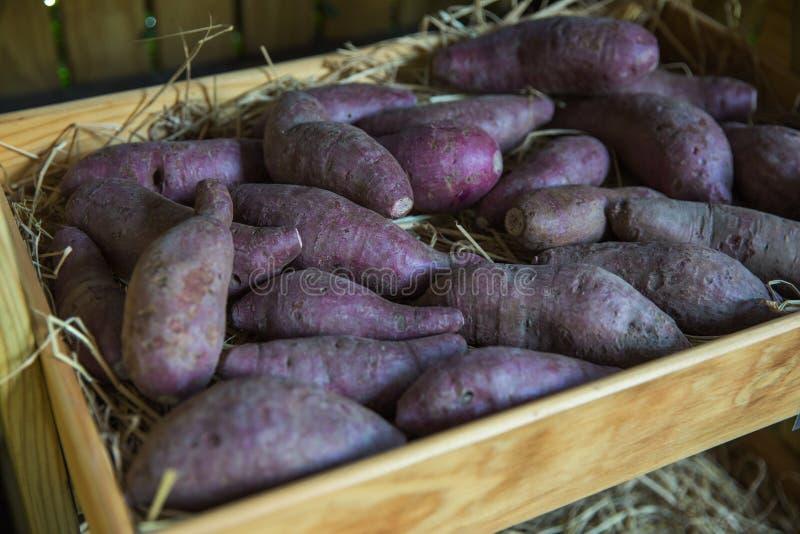 Fruto saudável fresco na exploração agrícola para a venda em um mercado, foco seletivo fotografia de stock royalty free