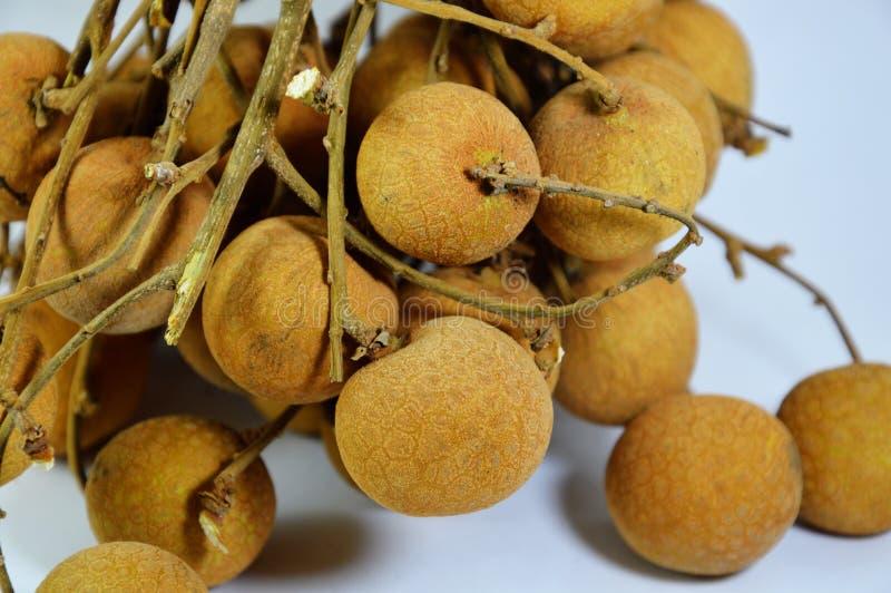 Fruto tailandês do fruto do Longan foto de stock royalty free