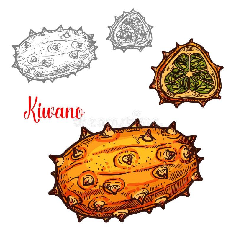 Fruto tropcial exótico do vetor do esboço do melão de Kiwano ilustração royalty free