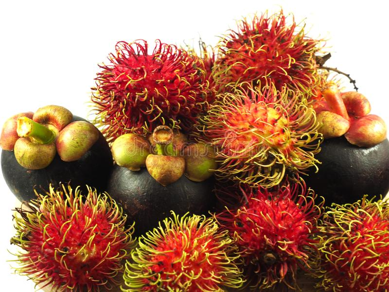 Fruto tropical Ásia do mangustão do Rambutan fotos de stock royalty free