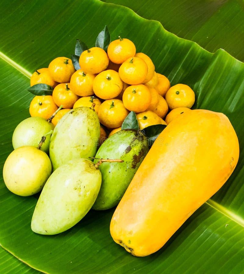 Fruto tropical fotografia de stock