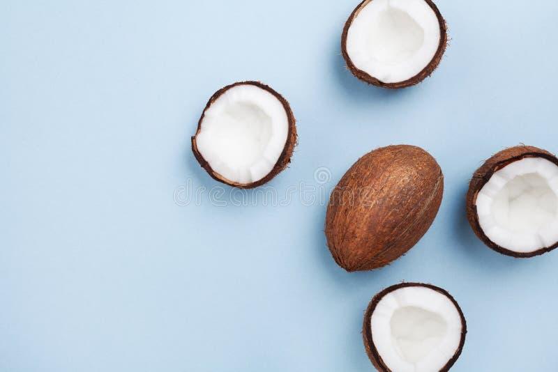 Fruto tropical do coco inteiro e meio na opinião superior do fundo pastel azul Teste padrão criativo do verão no estilo da config fotografia de stock royalty free