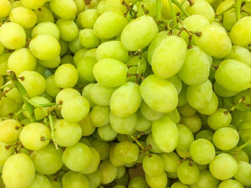 Fruto verde fresco da uva fotografia de stock royalty free