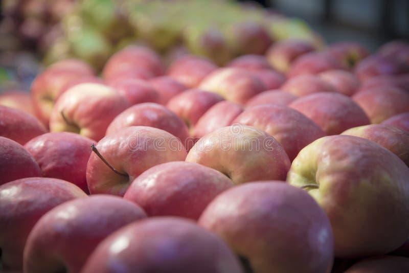 Fruto vermelho das maçãs fotos de stock royalty free