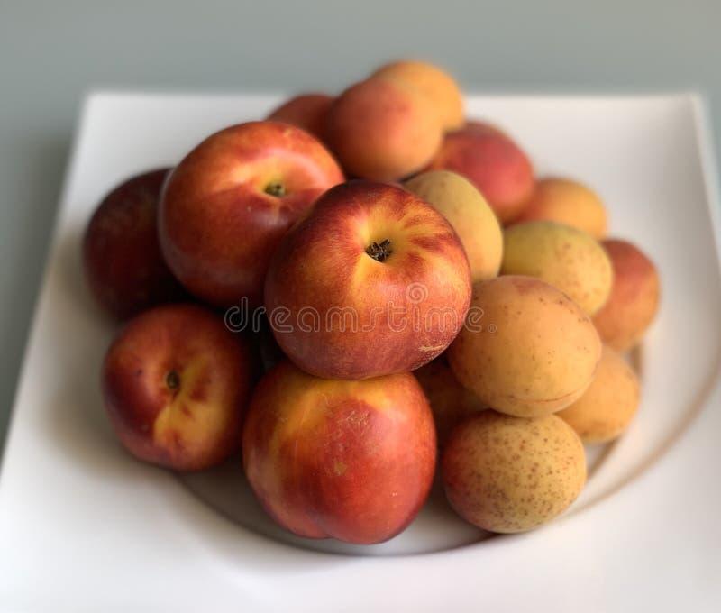 Frutos, abricós e nectarina em uma placa branca foto de stock royalty free