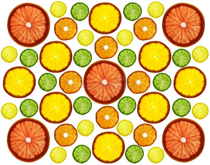 Frutos coloridos cortados transparência no fundo branco Anéis da toranja, do limão, da tangerina e da laranja fotografia de stock