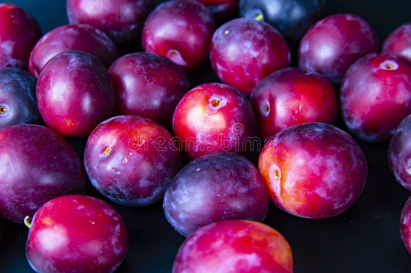 Frutos de ameixas do jardim em um fundo preto foto de stock royalty free