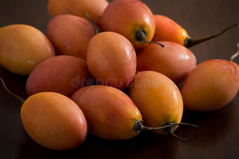 Frutos deliciosos do tamarillo Fruto exótico tropical comestível oval da planta do betaceum do Solanum, popular em Ámérica do Sul fotografia de stock
