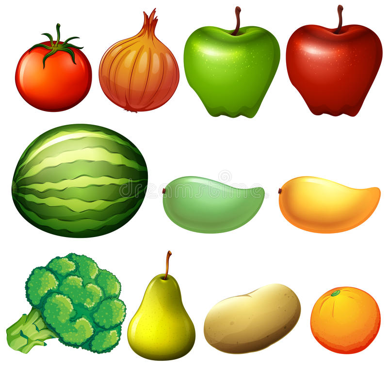 Frutos diferentes ilustração do vetor