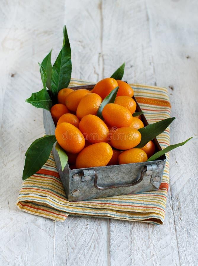 Frutos do Kumquat em um fundo de madeira fotos de stock