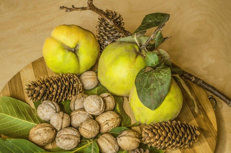 Frutos do marmelo com folhas desvanecidas, um punhado das nozes no escudo, cones coníferos, na placa da cozinha imagens de stock