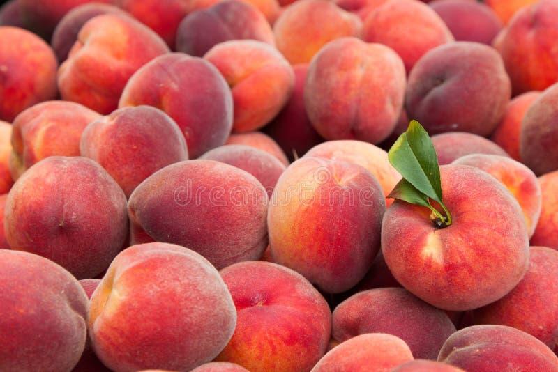 Frutos do pêssego fotografia de stock