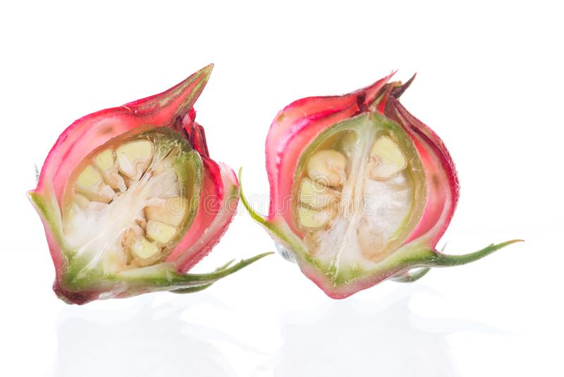 Frutos do sabdariffa ou do roselle do hibiscus isolados no branco fotos de stock