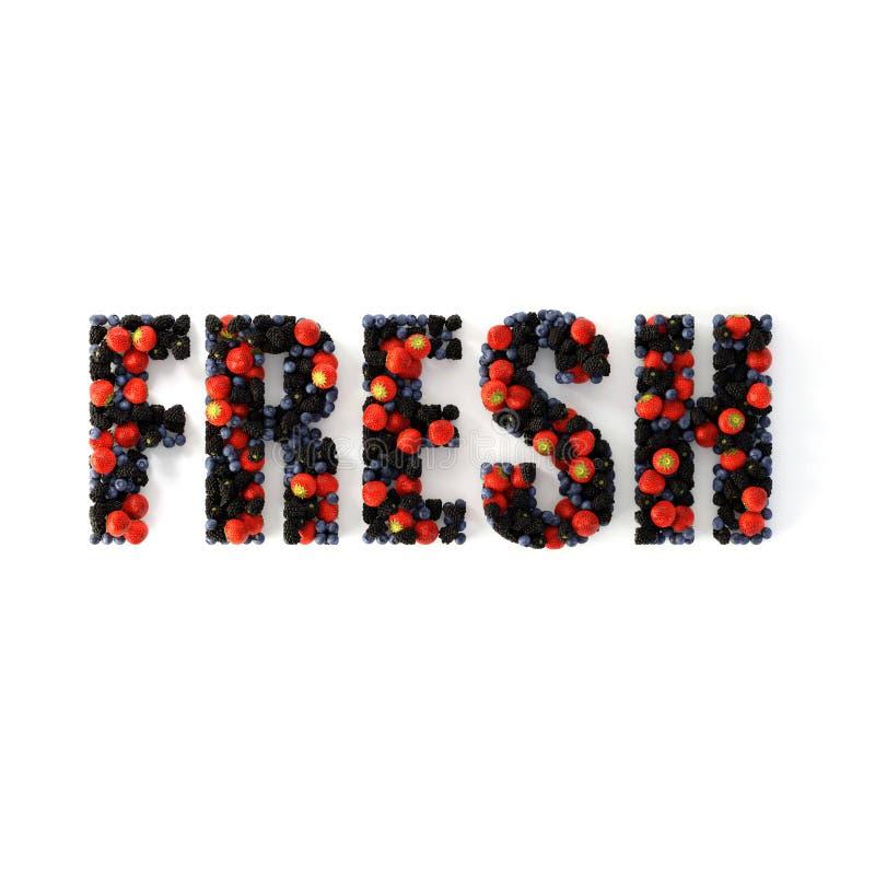 Frutos do texto fresco da floresta ilustração royalty free