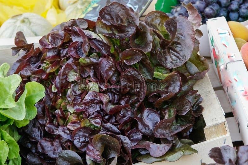 frutos em um mercado rural local do mês julho do verão da cidade metz imagens de stock royalty free