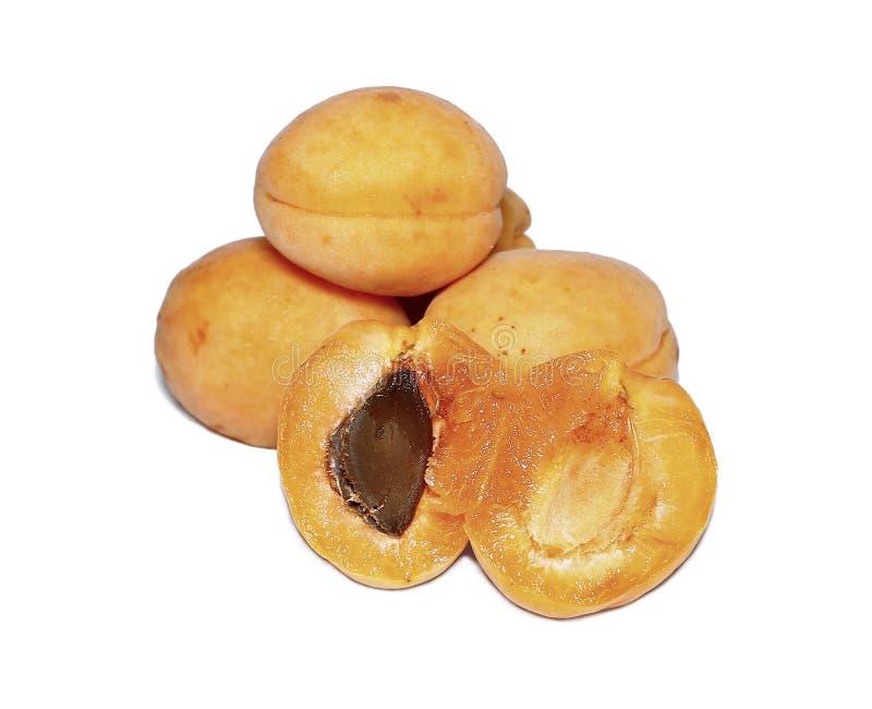 Frutos frescos do abricó isolados imagem de stock