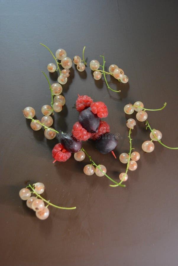 Frutos frescos, espetos das groselhas e framboesas com grupos dos corintos brancos em um fundo matte marrom foto de stock royalty free