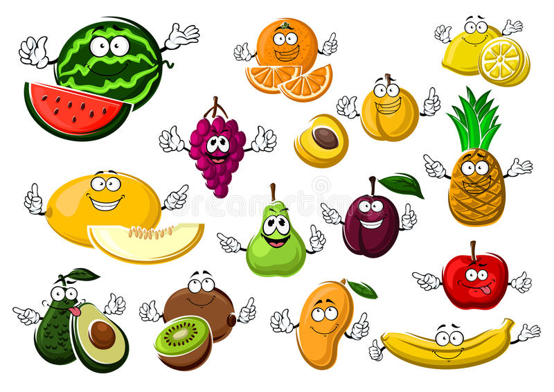 Frutos maduros apetitosos tropicais e do jardim ilustração stock
