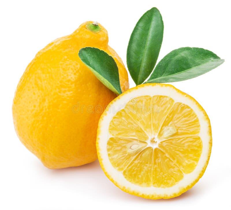 Frutos maduros do limão em um fundo branco imagens de stock