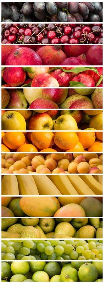 Frutos - mistura colorida do fruto - colagem do alimento fotos de stock