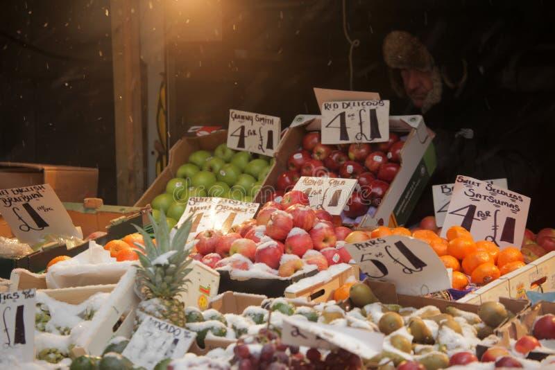 Frutos na neve imagens de stock
