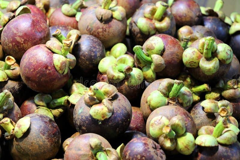 Frutos no mercado da noite - Kota Kinabalu Sabah Borneo Malaysia ?sia do mangust?o imagem de stock