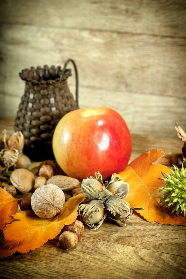 Frutos orgânicos do outono - frutos sazonais fotografia de stock royalty free