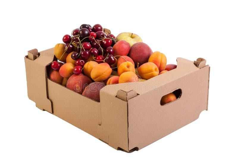Frutos orgânicos frescos e saborosos na caixa de cartão, isolada no branco fotografia de stock