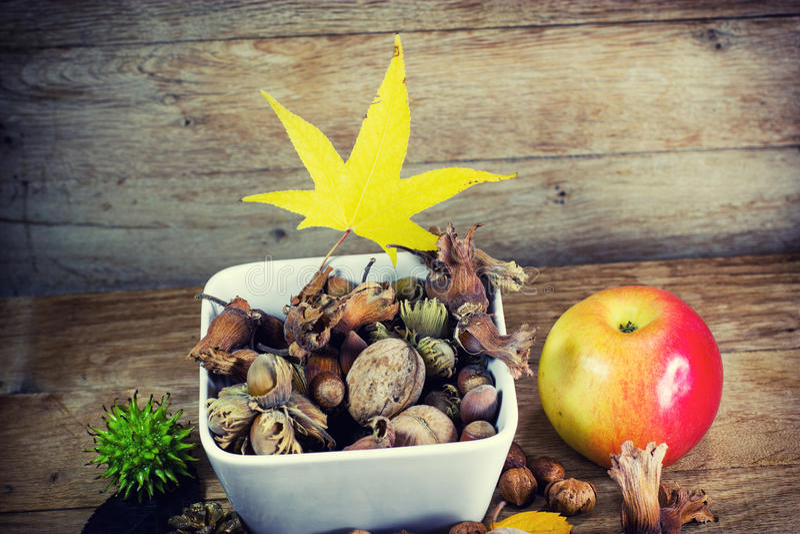 Frutos orgânicos sazonais frescos - frutos do outono fotografia de stock royalty free