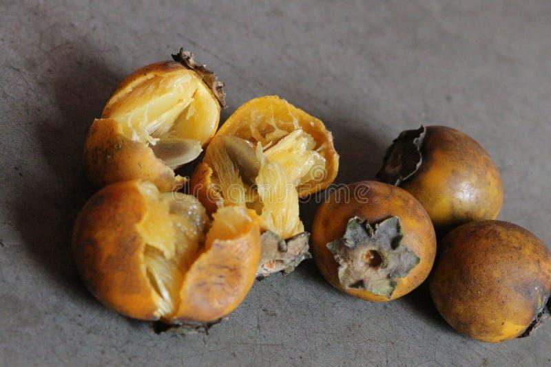 Frutos selvagens de Kendu fotos de stock