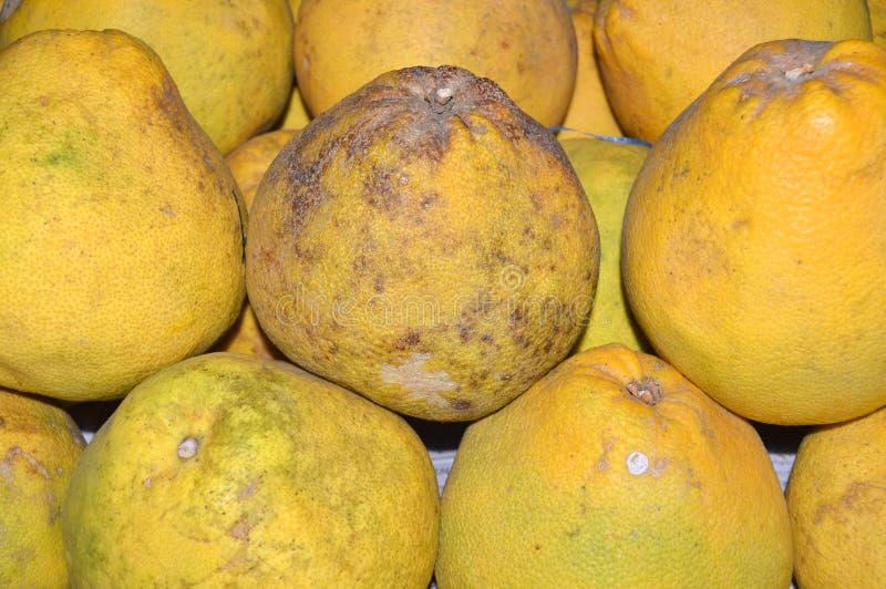 Frutos tailandeses do pomelo imagem de stock