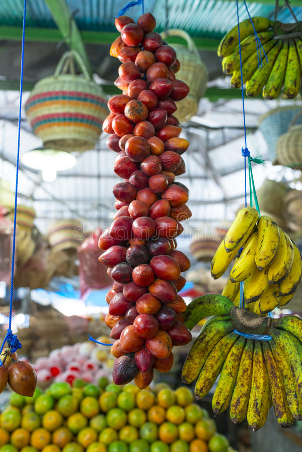 Frutos tropicais foto de stock royalty free