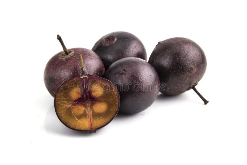 Frutos vermelhos do calabura de Multingia ou da cereja de Manila imagem de stock