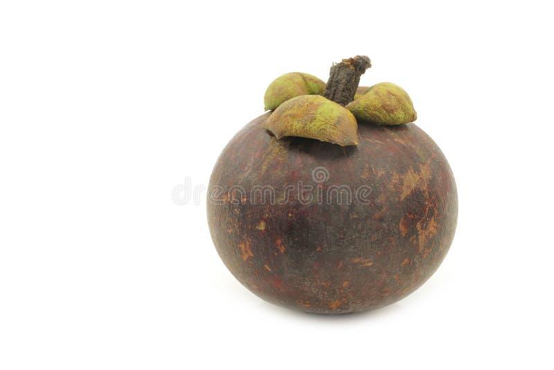 "Frutta ""linn del mangostano di garcinia mangostana "" fotografie stock libere da diritti"