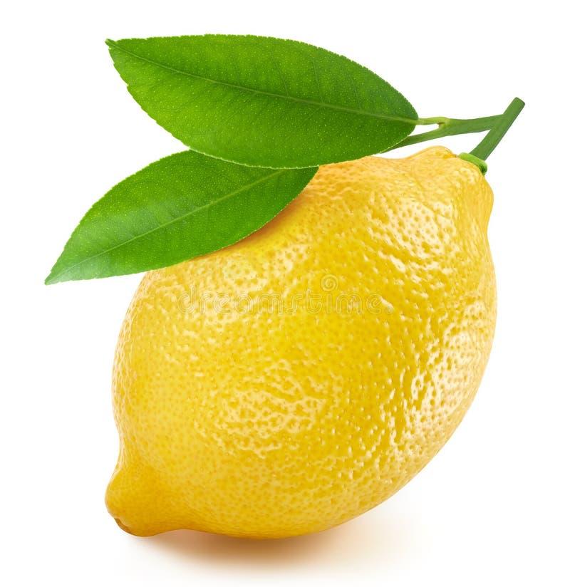 Frutta al limone isolata immagini stock libere da diritti