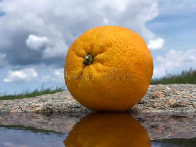 Frutta arancio nella natura su un'acqua vicina di pietra con un cielo blu e le nuvole fotografia stock libera da diritti